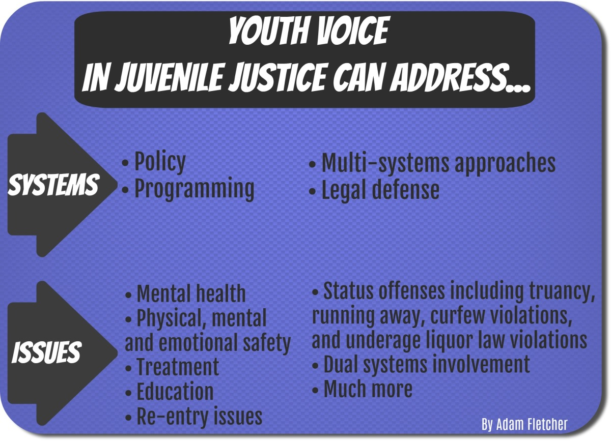 Youth voice in Juvenile justice can address systems and issues by Adam Fletcher for Freechild Institute